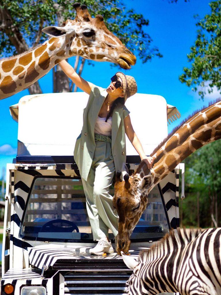 ชุดไปเที่ยวสวนสัตว์ สวยเรียบหรู