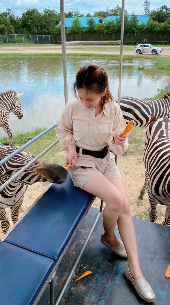 ชุดไปเที่ยวสวนสัตว์ สวยไม่ตกเทรนด์