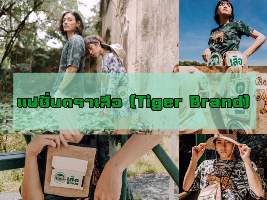 แฟชั่นตราเสือ (Tiger Brand) เทรนด์เท่สุดฮิต มีให้เลือกใช้งาน อย่างหลากหลาย