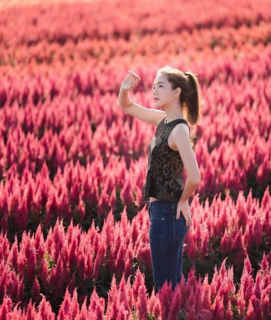 ถ่ายรูปกับทุ่งดอกไม้เอามือยกขึ้นบังแดดเบาๆ